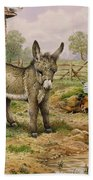Donkey And Farmyard Fowl  Beach Towel