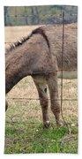 Donkey Finds Greener Grass Beach Towel