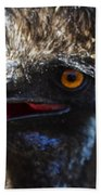 Dont Mess With The Emu Beach Towel