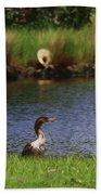 Double-crested Cormorant 2q Beach Towel