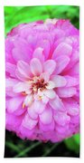 Double Pink Zinnia Beach Towel