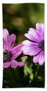 Double Purple African Daisy Beach Towel