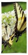 Double The Pleasure - Eastern Tiger Swallowtails Beach Sheet
