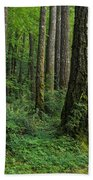 Douglas-fir Beach Towel