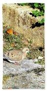 Dove  #9225 Beach Towel