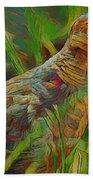 Dove Painterly Beach Sheet