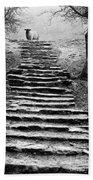 Dovedale Steps Beach Towel