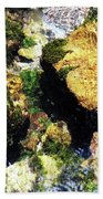 Down Stream Of Clearwater Falls Beach Towel