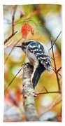 Downy Woodpecker In Autumn Forest Beach Towel