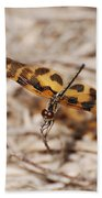 Dragon Fly Beach Towel