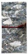 Dragon On The Pavement Beach Towel