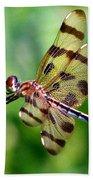 Dragonfly 10 Beach Towel