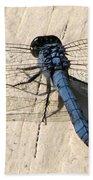 Dragonfly 5 Beach Towel