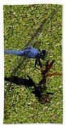 Dragonfly 73 Beach Towel