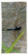 Dragonfly A Beach Towel
