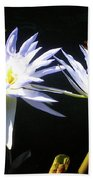 Dragonfly Lily Beach Towel