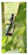 Dragonfly Love Beach Towel