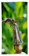 Dragonfly On Flag Post Beach Towel