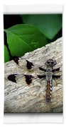 Dragonfly On Log Beach Towel