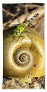 Dragonfly On Snail Beach Towel
