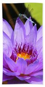 Dragonfly On Water Lily Beach Towel