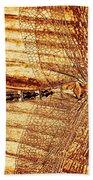 Dragonfly Sepia Beach Towel