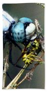 Dragonfly With Yellowjacket 5 Beach Towel