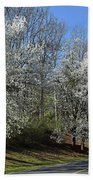 Dreamin' Of A White Spring No.5 Beach Towel