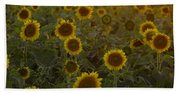 Dreaming In Sunflowers Beach Towel
