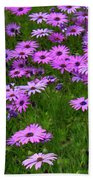 Dreaming Of Purple Daisies  Beach Towel