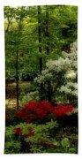 Dreaming Of Spring Beach Towel by Sandy Keeton
