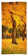 Dreamy Autumn Day Beach Towel