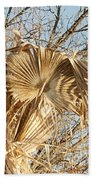 Dried Palm Fronds In The Wind Beach Towel