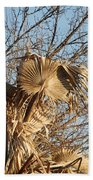 Dried Palm Fronds  Beach Towel