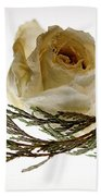 Dried White Rose Beach Towel