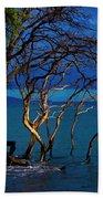 Driftwood 01 Beach Towel