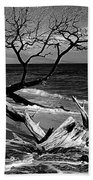 Driftwood Bw Fine Art Photography Print Beach Towel