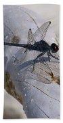 Driftwood Dragofly Beach Towel