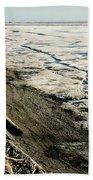Driftwood On The Frozen Arctic Coast Beach Sheet