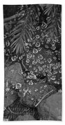 Droplets Beach Towel