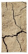 Dry Cracked Earth And Green Leaf Beach Towel