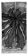 Dry Leaf Collection Bnw 1 Beach Towel