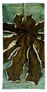 Dry Leaf Collection Wall Beach Towel