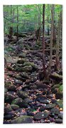 Dry River Bed- Autumn Beach Towel