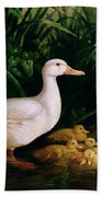 Duck And Ducklings Beach Towel by English School