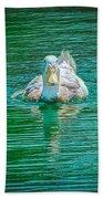 Duck - C Beach Towel