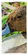 Male Northern Pintail In Key West Beach Towel by Bob Slitzan