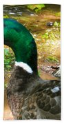 Duck On The Lake 1 Beach Towel