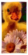 Fuzzy Duckling And Daisies Beach Towel