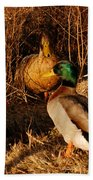 Ducks At Dusk Beach Towel